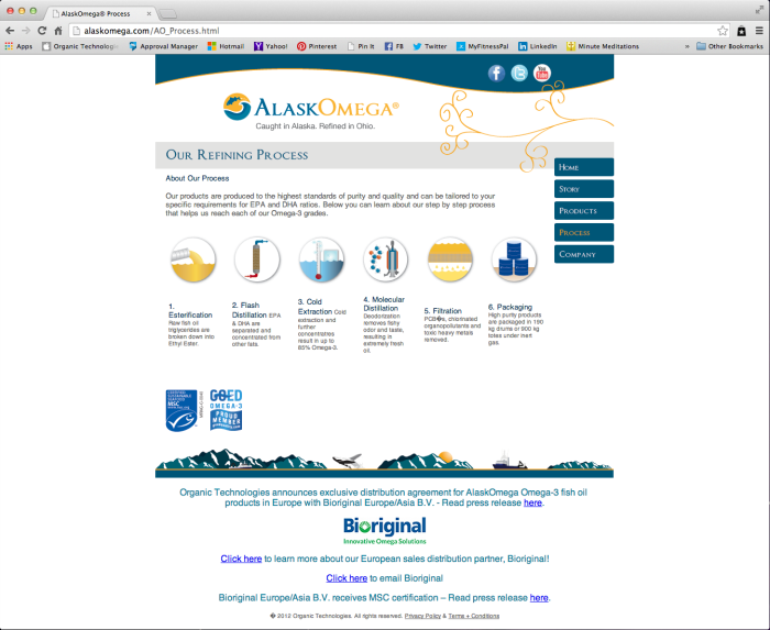 AlaskOmega Website - Process