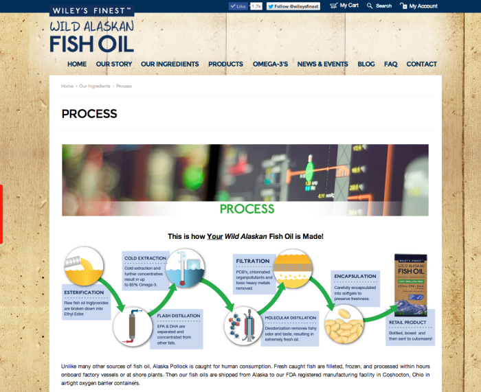 Wiley's Finest Website - Process